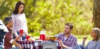 nevera picnic